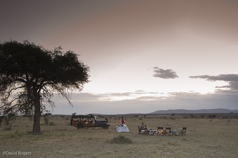 best safari tour of kenya and tanzania