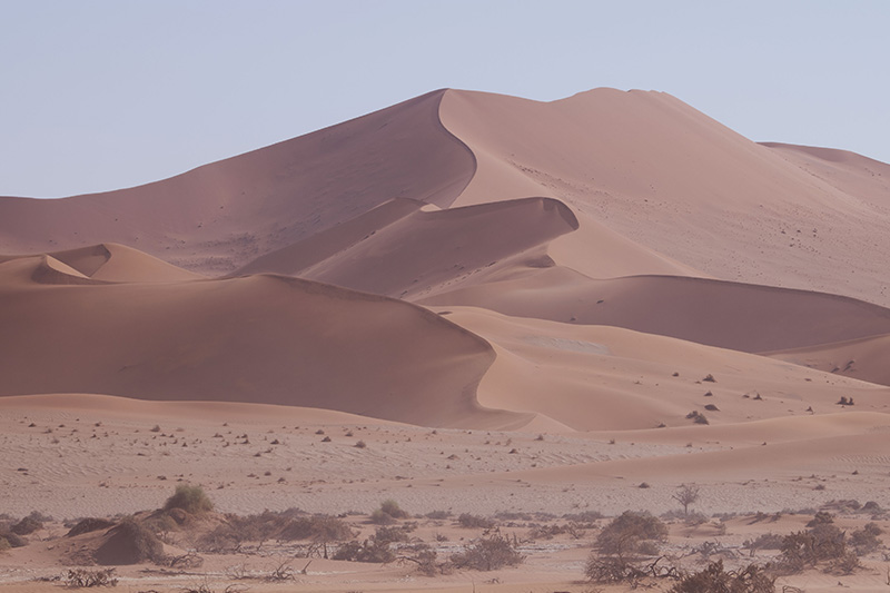 namibia small group safari tour