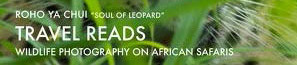 National Geographic African photographic safaris
